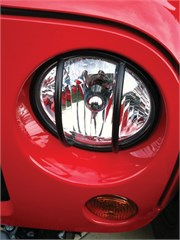 Headlight Euro Guards Wrangler JK 2007-2016 in Black by Rampage