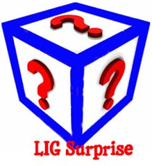 LIG Surprise Apparel (Final Sale)