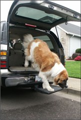 Otto Step Portable Pet Step Platform for Jeeps, SUVs, Trucks