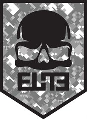 """ELiTE"" Skull Badge Decal on Gray Digital Camo"